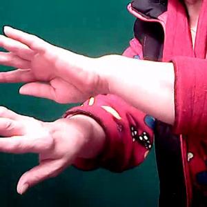 руки2